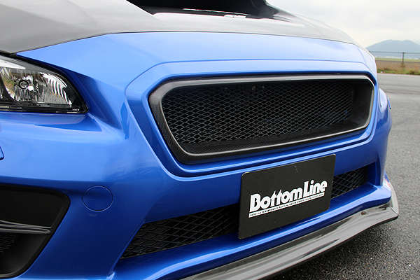 ChargeSpeed Carbon Fiber Grille