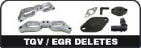 TGV / EGR Deletes